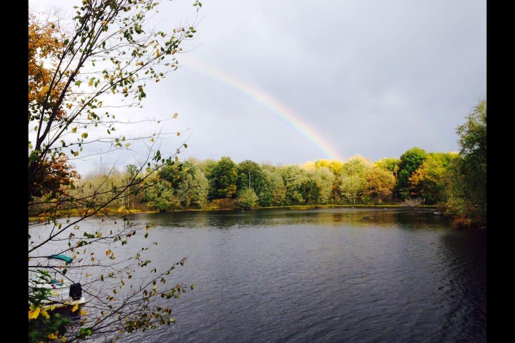 Rainbow after a summer shower