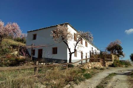 Finca histórica Estudio en el corazon de Alpujarra