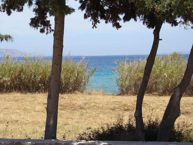 116m² villa Achilleas in Dryos, Paros island - Drios - Apartment