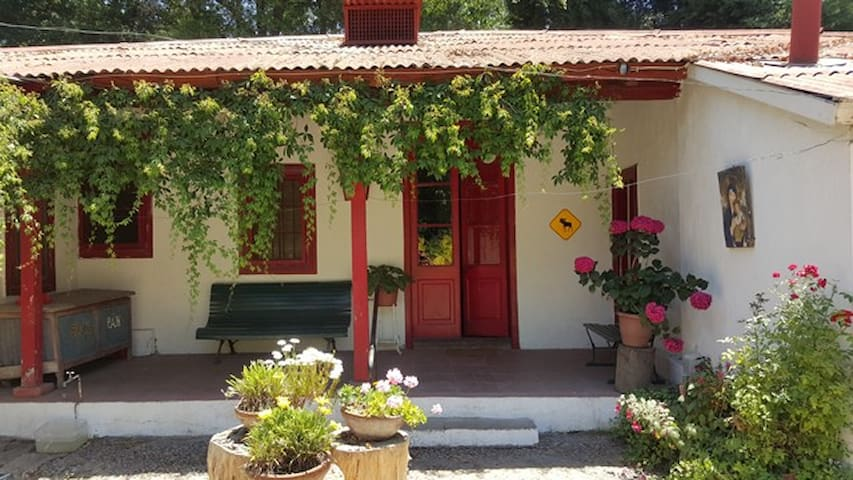 Villa Magnolia - country haven
