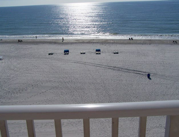 Come Play on the Beach and Watch the Dolphins - Madeira Beach - Appartement en résidence