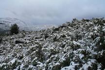 en invierno también es una experiencia los Ecorefugios... y no te preocupes todos cuentan con calefacción.