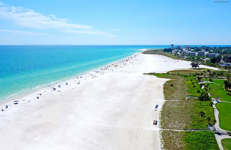 Seawinds Blue on Siesta Key