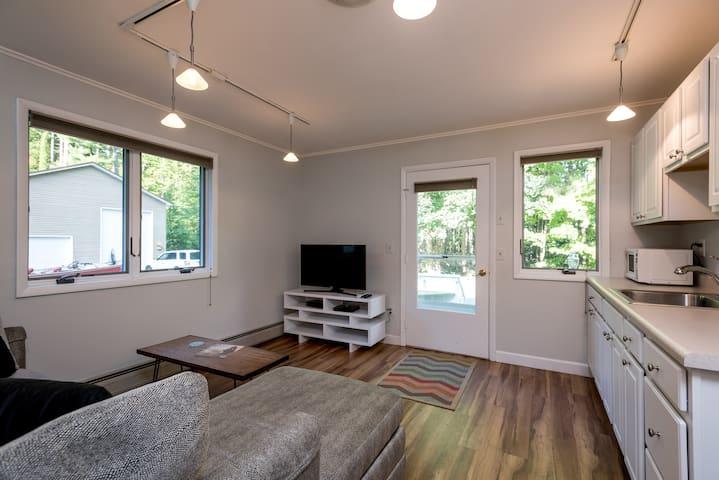 Living Room/Kitchen Combo