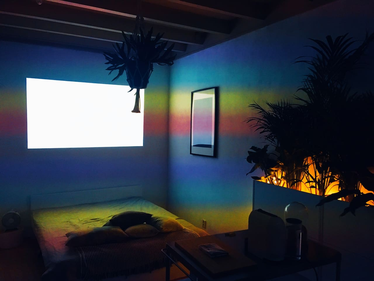 Jungle apartment with filmprojector