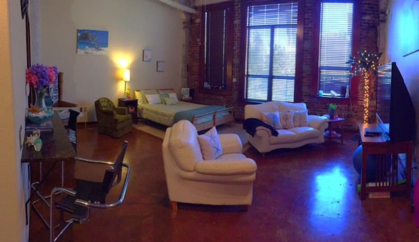 Just East of Downtown Houston - Houston - Loft