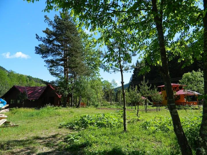 Yeşilyayla Eko Turizm ve Konaklama(BALKONLU DAIRE)