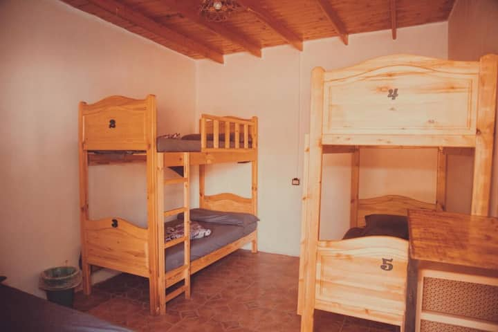 shared room for female no.1