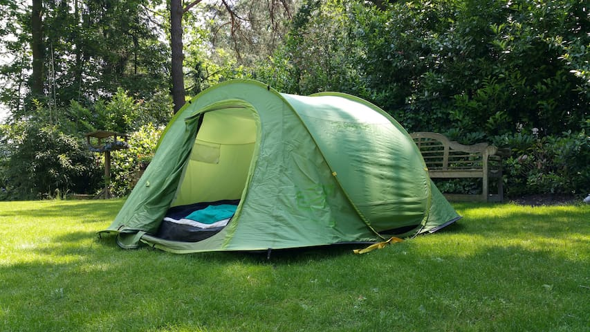 Rent A Tent Cheap And Fun Stay In Amsterdam Tents For
