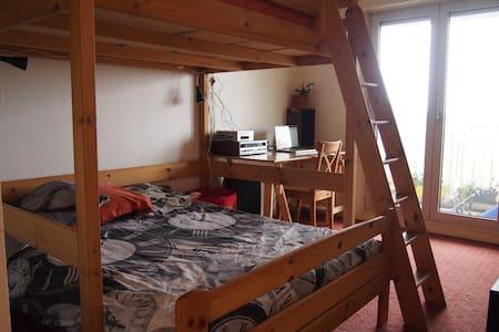 Annemasse centre, belle chambre - Annemasse - 아파트