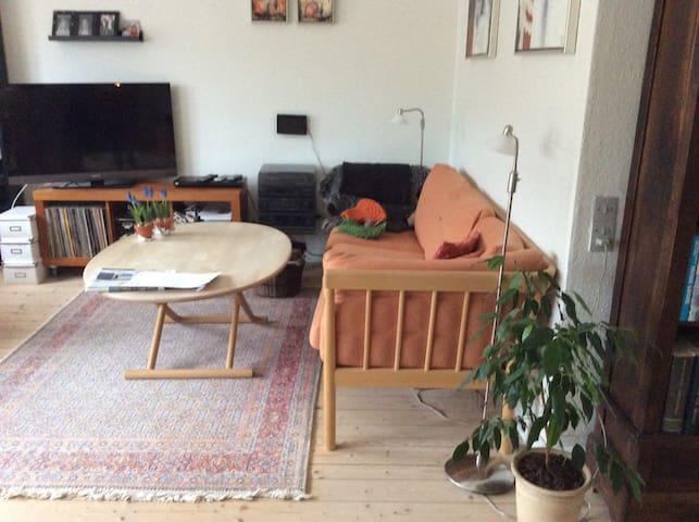 Cosy and homelike House. - Aalborg - Casa