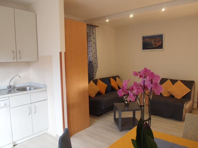 Apartamenti MARKO app. KIWI 2+2 Novigrad-Cittanova - Novigrad - Flat