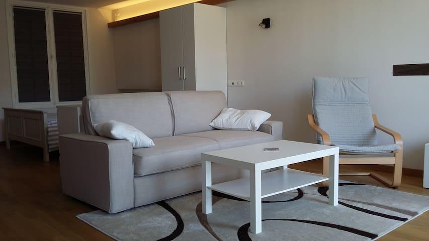 Appartement loft de 50 m² en bord de Nive