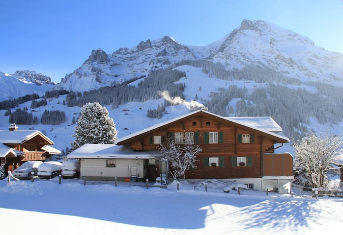 Chalet Fitzerweg with marvelous mountain view