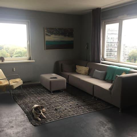 Apartment Haarlem, near Amsterdam, Zandvoort beach