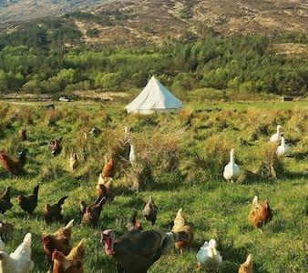 Bell tent on Croft 3, Isle of Rum - Kinloch