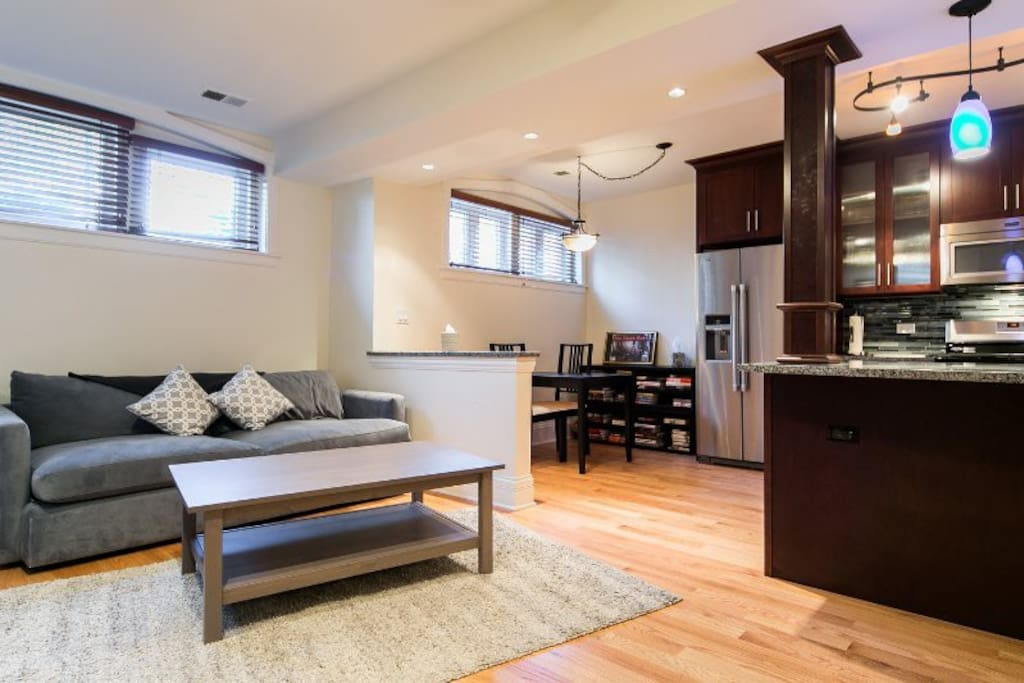 1 bedroom luxury apartment apartments for rent in chicago