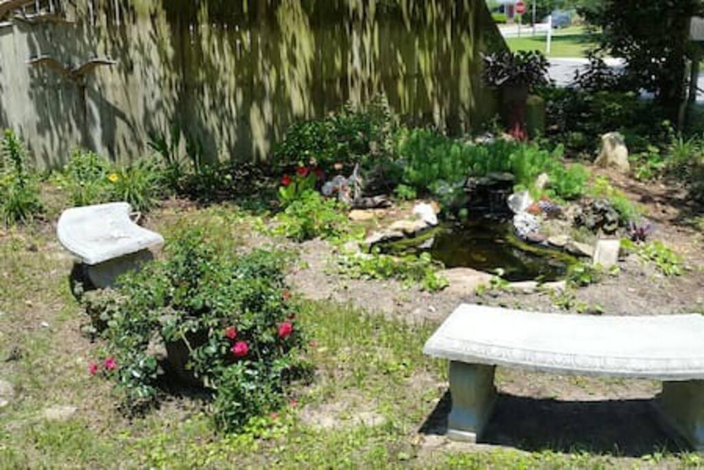 Garden pond and backyard free range chickens!