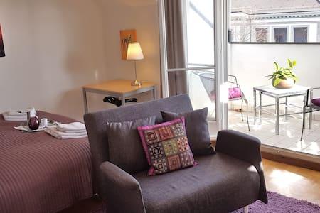 Brand new 1-roomRooftop apt next to BASELWORLD/ART - Basel - Apartmen