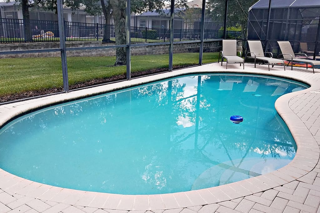Privet pool for you to layout in the beautiful Florida sun