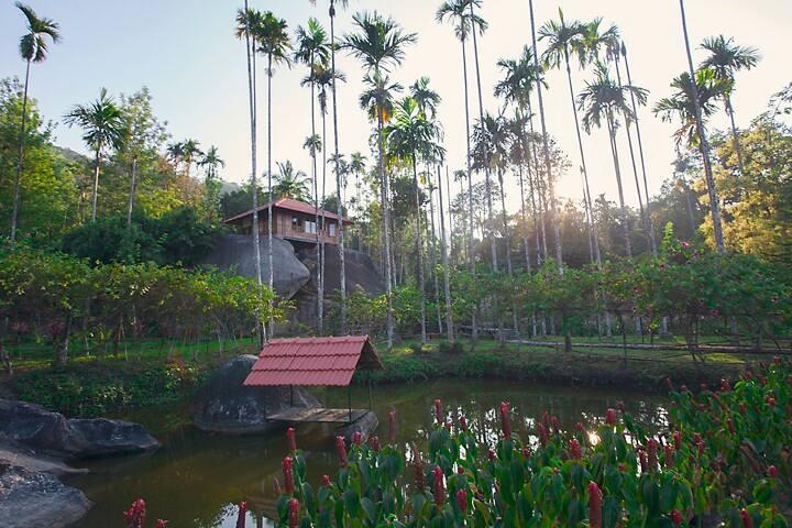 Marmalade Springs Wayanad - Rock House