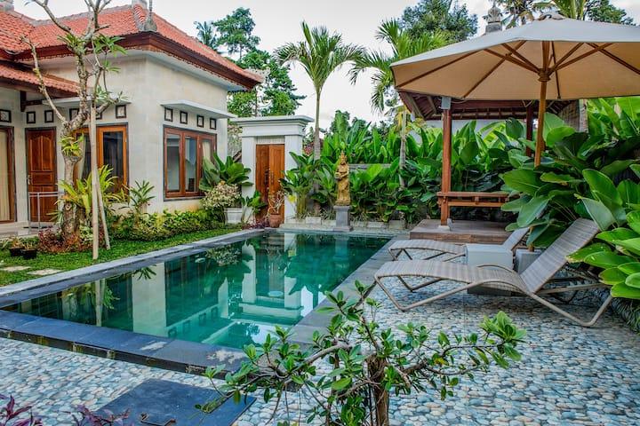 Umah San Villas Deluxe Queen A Villas For Rent In Ubud Bali Indonesia