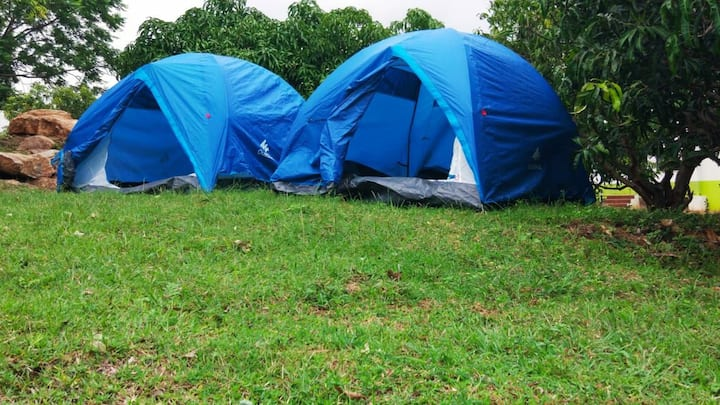 TGC: Cozy Tents Stay Close to Denkanikottai