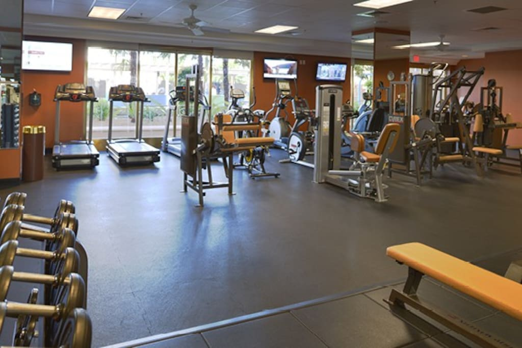 Spacious and well-equipped gym