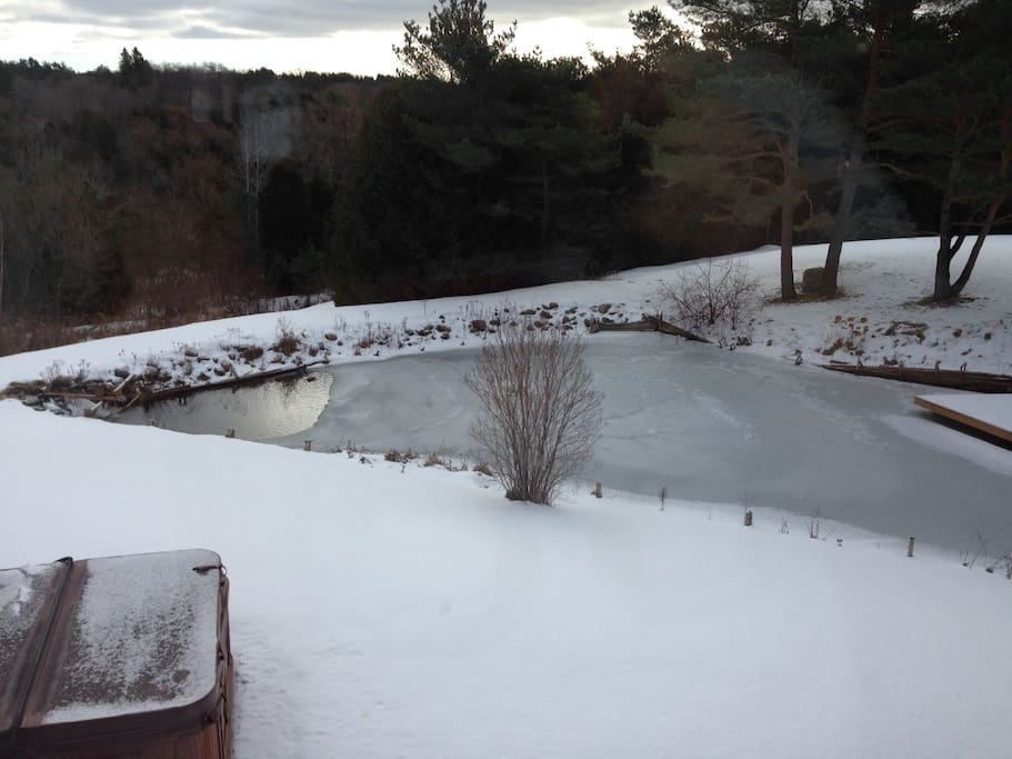 View from the kitchen- pond with dock, hot tub, and fire pit.
