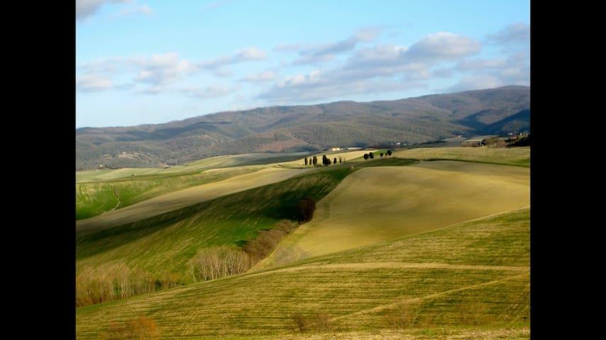 Relax nella campagna Toscana ad un passo dal mare