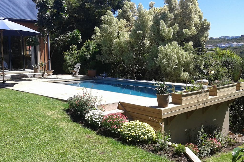 Salt chlorinated swimming pool and lawned garden.