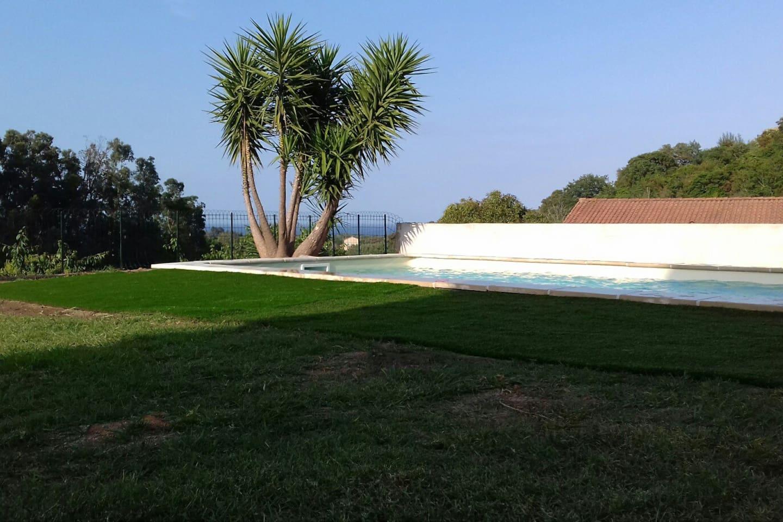 piscine commune, avec petite vue mer en fond de toile. 7.5X3.5 mètres sur 1.20 mètres de profondeur