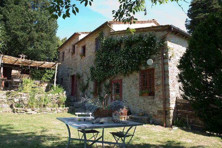 "A farmhouse overlooking Lucca ""Gelsomino 133c"" - Lucca - Bed & Breakfast"