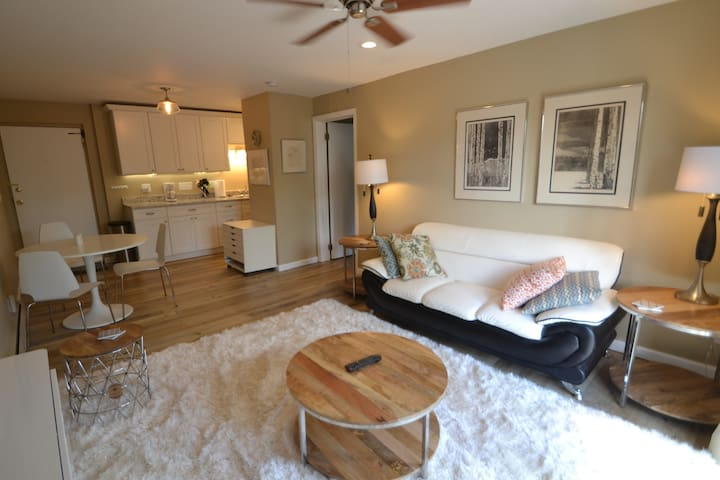 R-13 Fabulous remodeled unit in central location