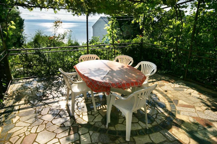 Studio flat with terrace and sea view Klenovica, Novi Vinodolski (AS-5530-a)