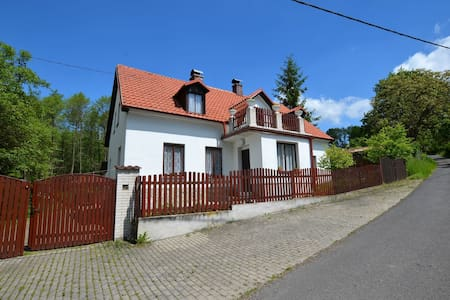 Idyllic Villa with Private Pool in Trebusin Czech Republic