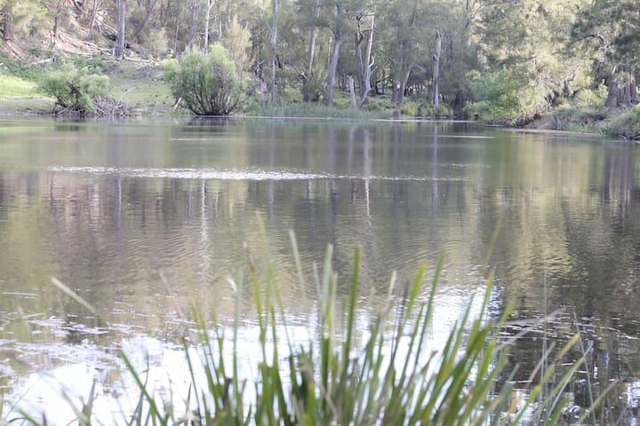 Arcadian Cabin - Southern Highlands River Retreat