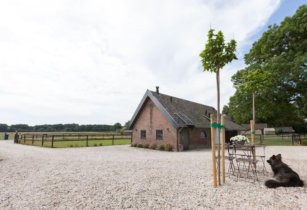 De varkensschuur huizen te huur in lieren gelderland for Te huur in gelderland