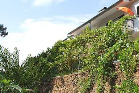 Casa de Paraíso de Sazes - Sazes da Beira - Rumah