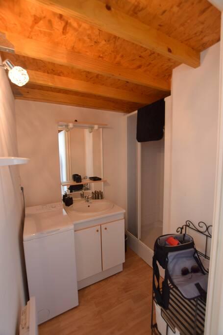Salle d'eau avec machine à laver
