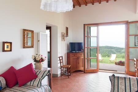 Panorama e Relax fra gli ulivi - Lastra a Signa