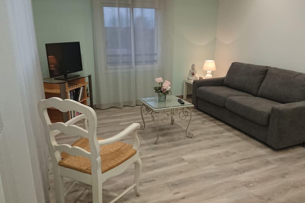 Salon avec canapé convertible, télévision