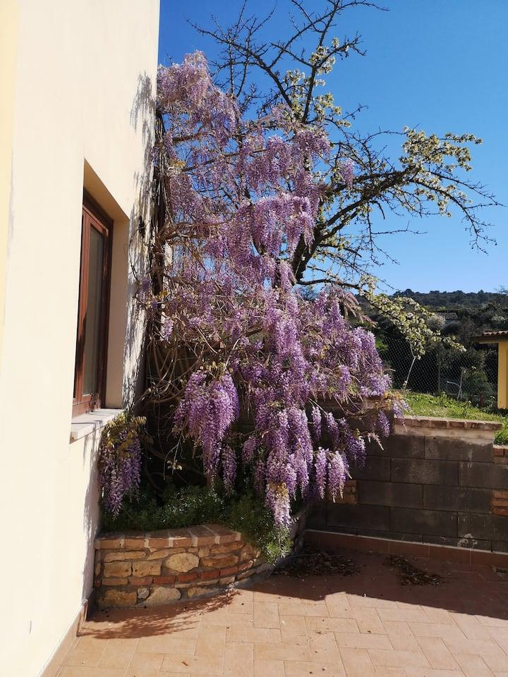 Casa di Luca - Narni - Umbria