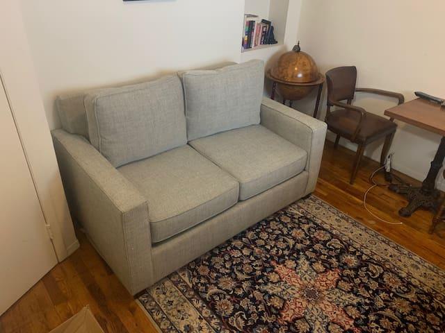 Greenwich village 1 bedroom - spacious!