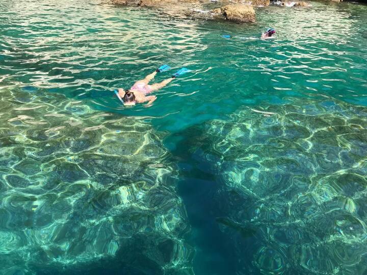 Snorkeling II