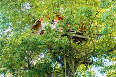 Cabane Infinie pour 2 personnes - Chassey-lès-Montbozon - Dům na stromě