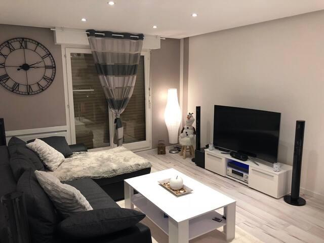 Charmant appartement flambant neuf au Wacken - Wohnungen zur Miete ...