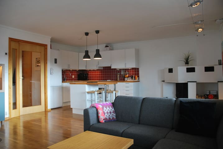 Close to the mountain, great apartment in Bergen