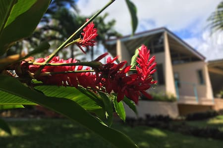 Coral Hill - Red Ginger Lily Suite