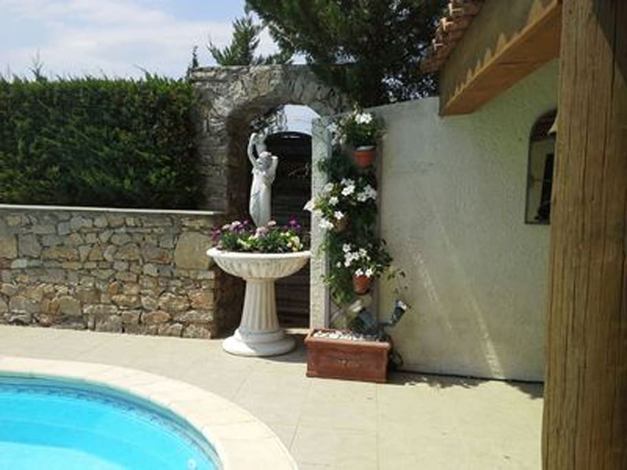 Pool area with garden fountain